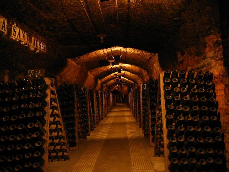 Hầm rượu vang cổ Saint Martin