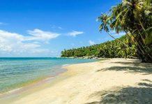 Các địa điểm tham quan tại Côn Đảo thu hút được nhiều du khách nhất